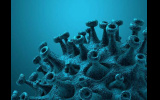 Κορωνοϊός: 75 κρούσματα στην Ημαθία την Τρίτη, νέο «μαύρο» ρεκόρ με 562 διασωληνωμένους - 101 θανάτους και  2.135 κρούσματα σε όλη την Επικράτεια